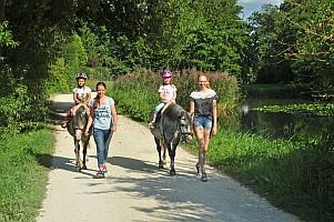 Ponyführen - Spaziergang mit Pony